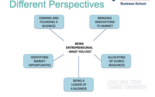 entrepreneurial different perspectives