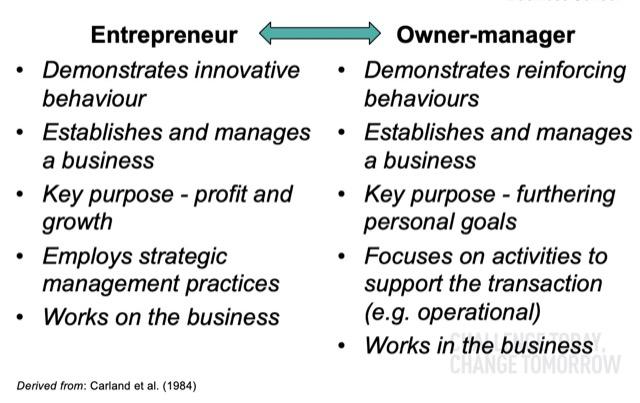 entrepreneur owner