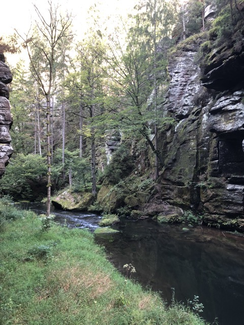 bohemian switzerland park gorge