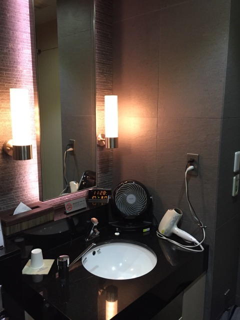 ana lounge bathroom