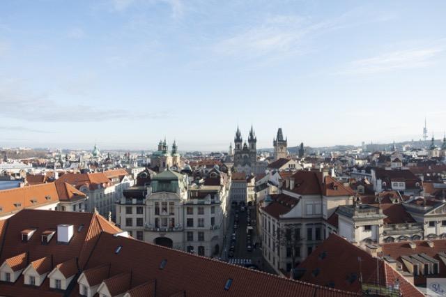 Prague library top