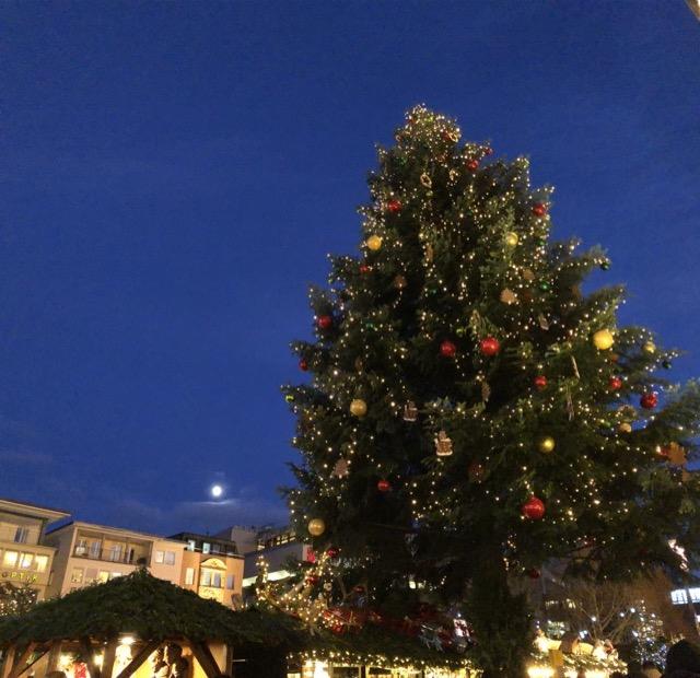 Christmas tree -3