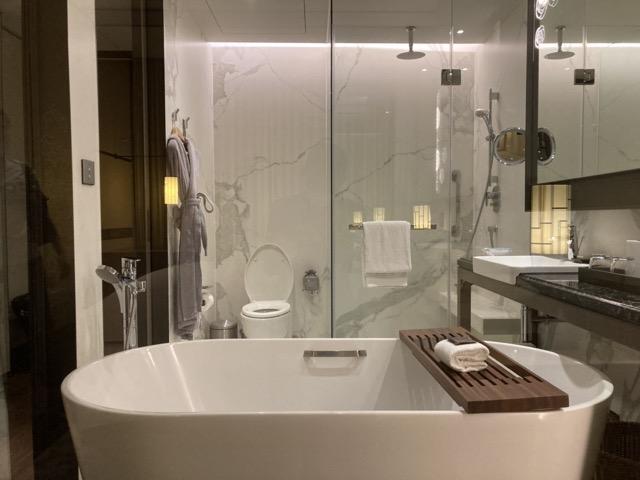 taipei-shihlin-renaissance-hotel-bathroom
