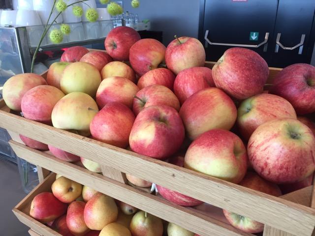 austrian lounge fruit